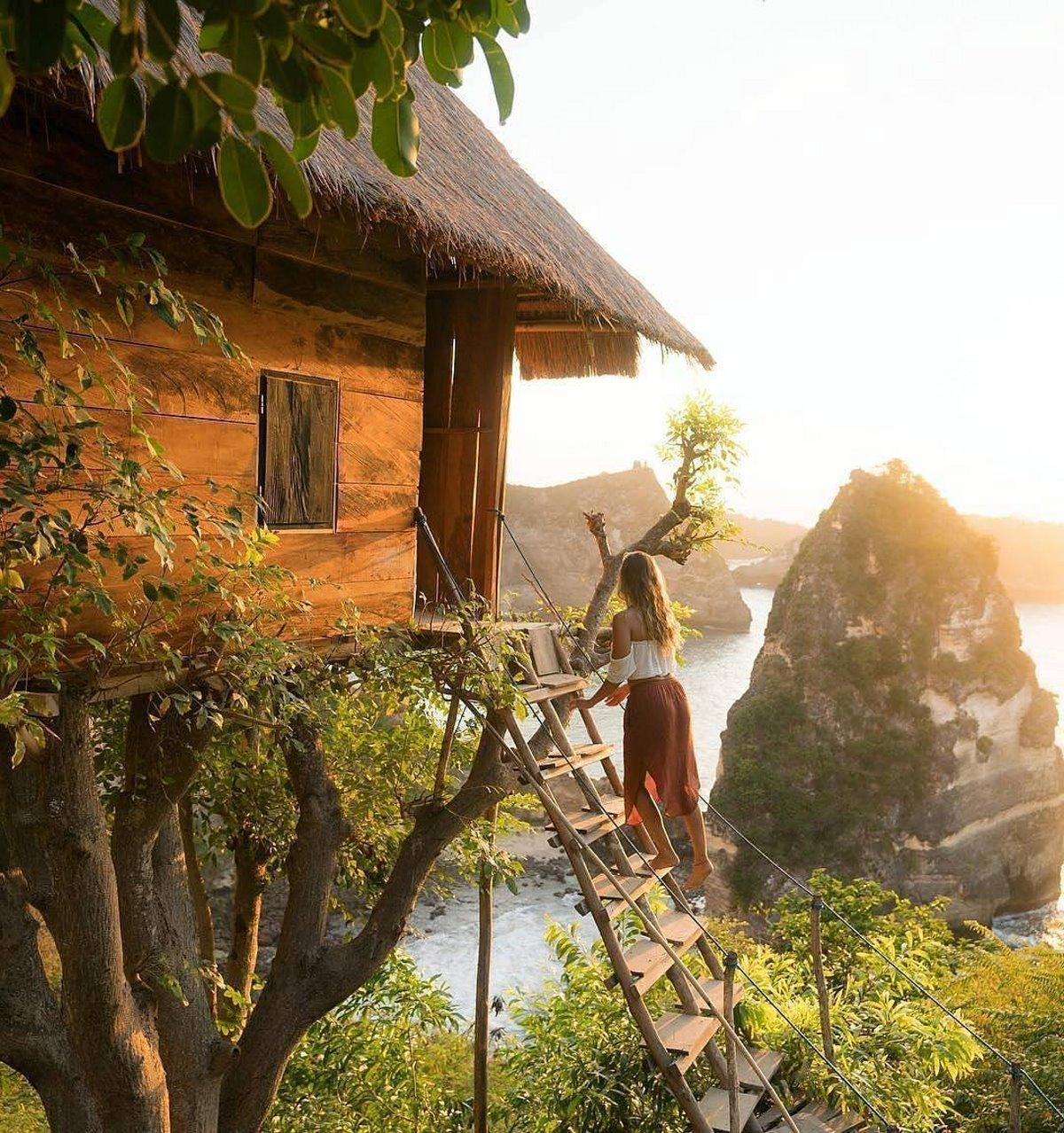 Δεντρόσπιτο Ινδονησία θέα