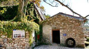 Η αρχαιότερη βιβλιοθήκη της Ελλάδας βρίσκεται σε ένα ορεινό χωριό της Πελοποννήσου & εμείς κάνουμε ένα ταξίδι στον ιστορικό οικισμό!