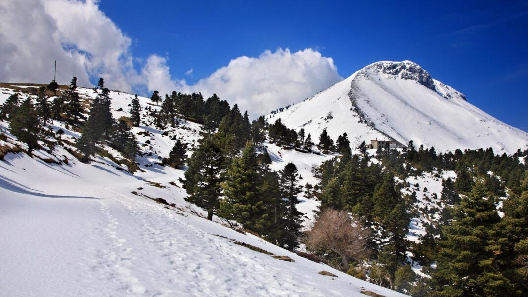 Χιονισμένη Δϊρφυς