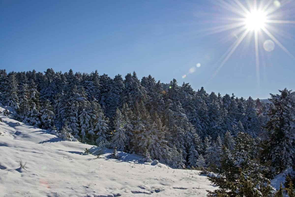 Το χιονισμένο βουνό κατά μήκος της διαδρομής Καρπενήσι Κρίκελλο