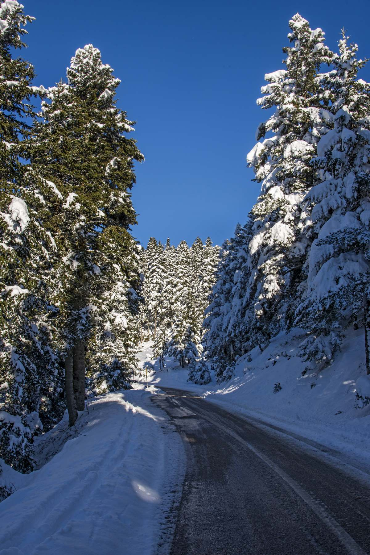 Η διαδρομή Καρπενήσι Κρίκελλο μέσα στο υπέροχο χιονισμένο τοπίο