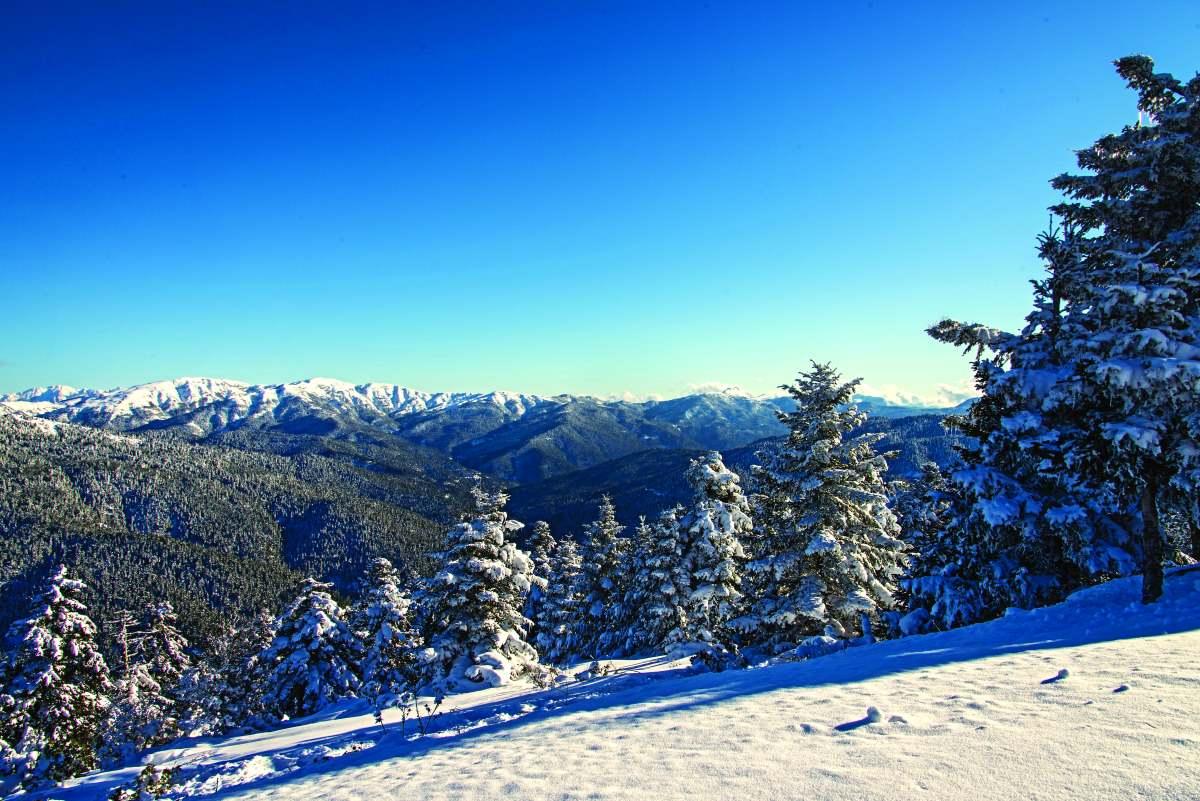 Υπέροχα χιονισμένα τοπία κατά μήκος της διαδρομής Καρπενήσι Κρίκελλο