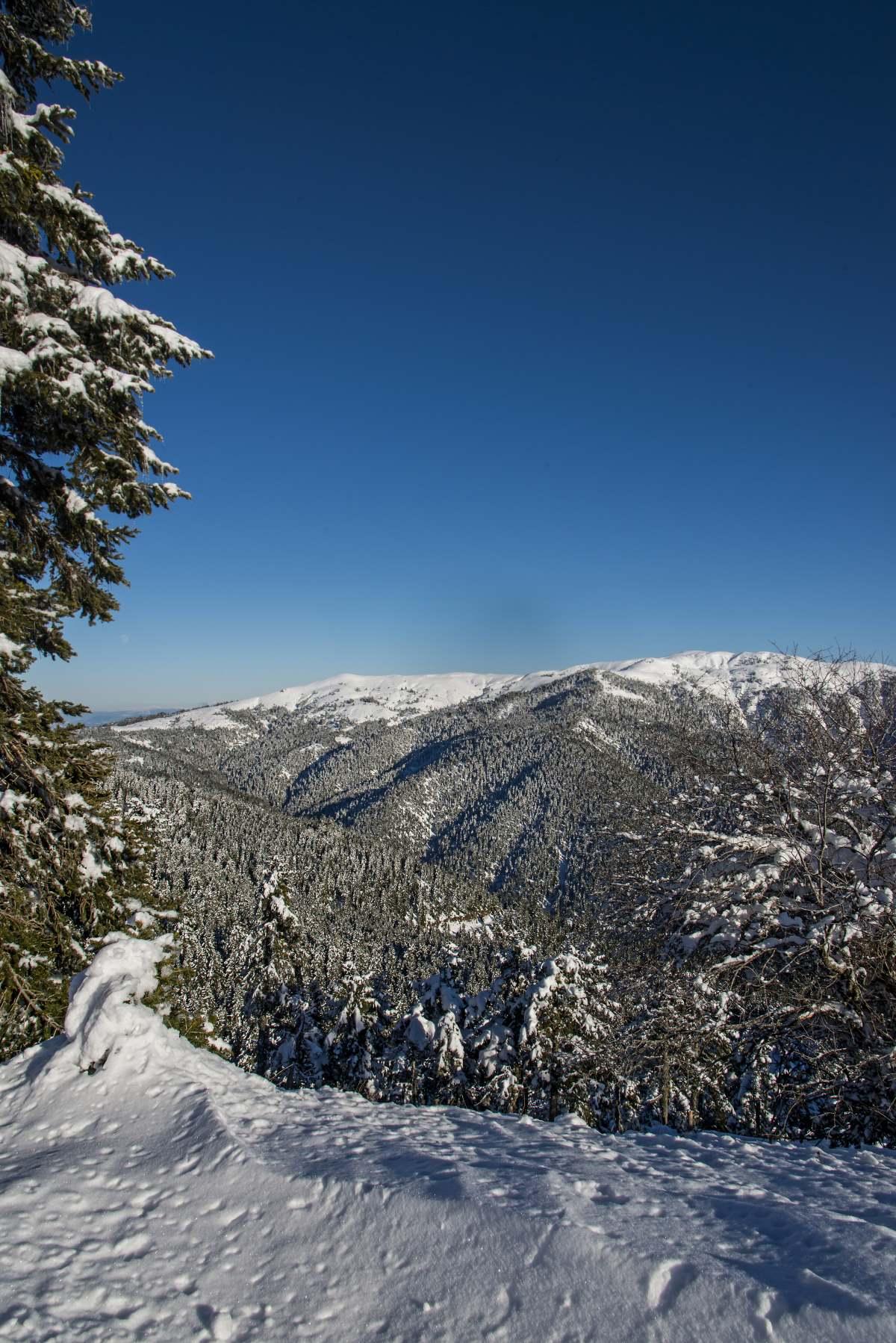 Το χιονισμένο τοπίο κατά μήκος της διαδρομής Καρπενήσι- Κρίκελλο