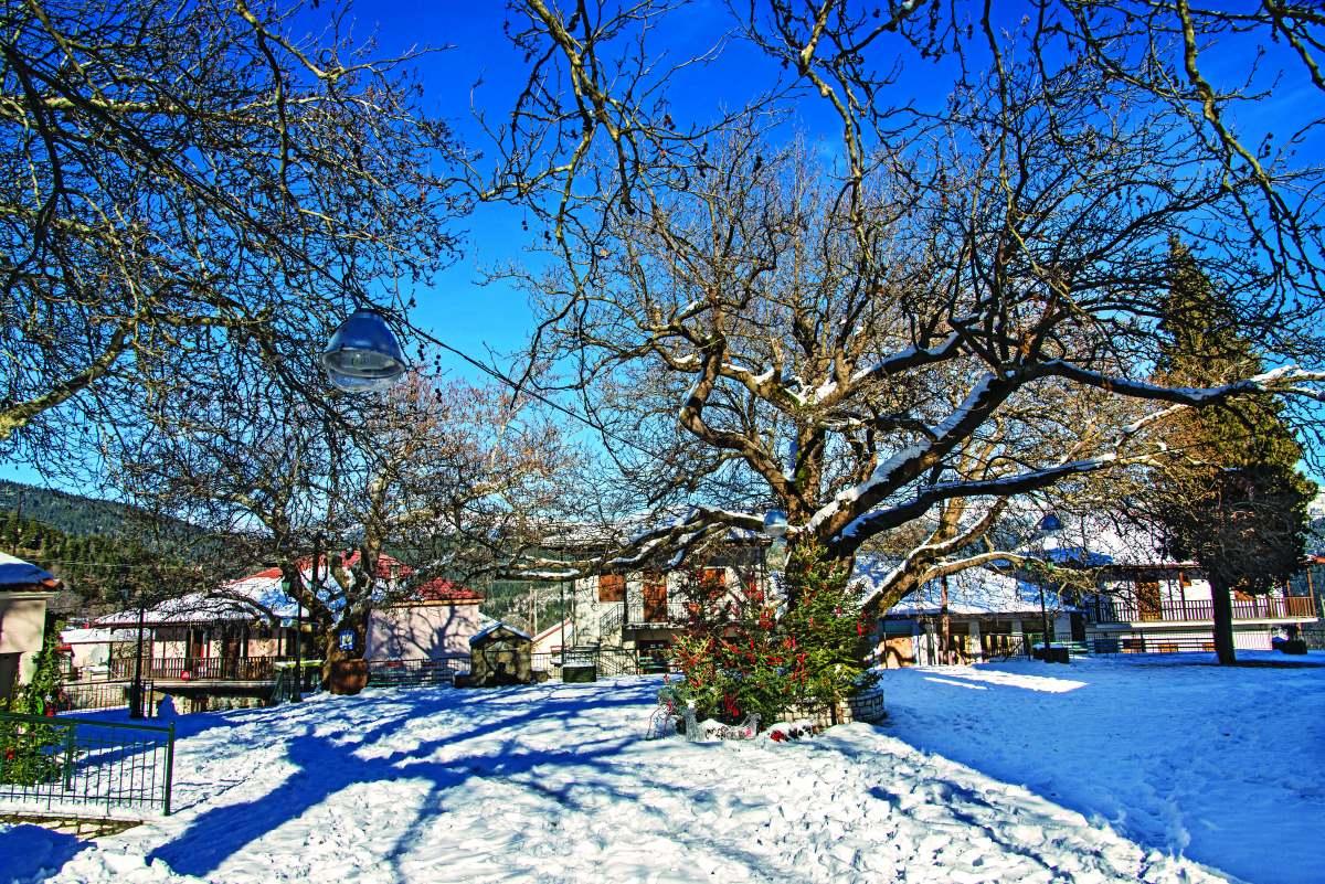Κρίκελλο, το χωριό ντυμένο στα λευκά