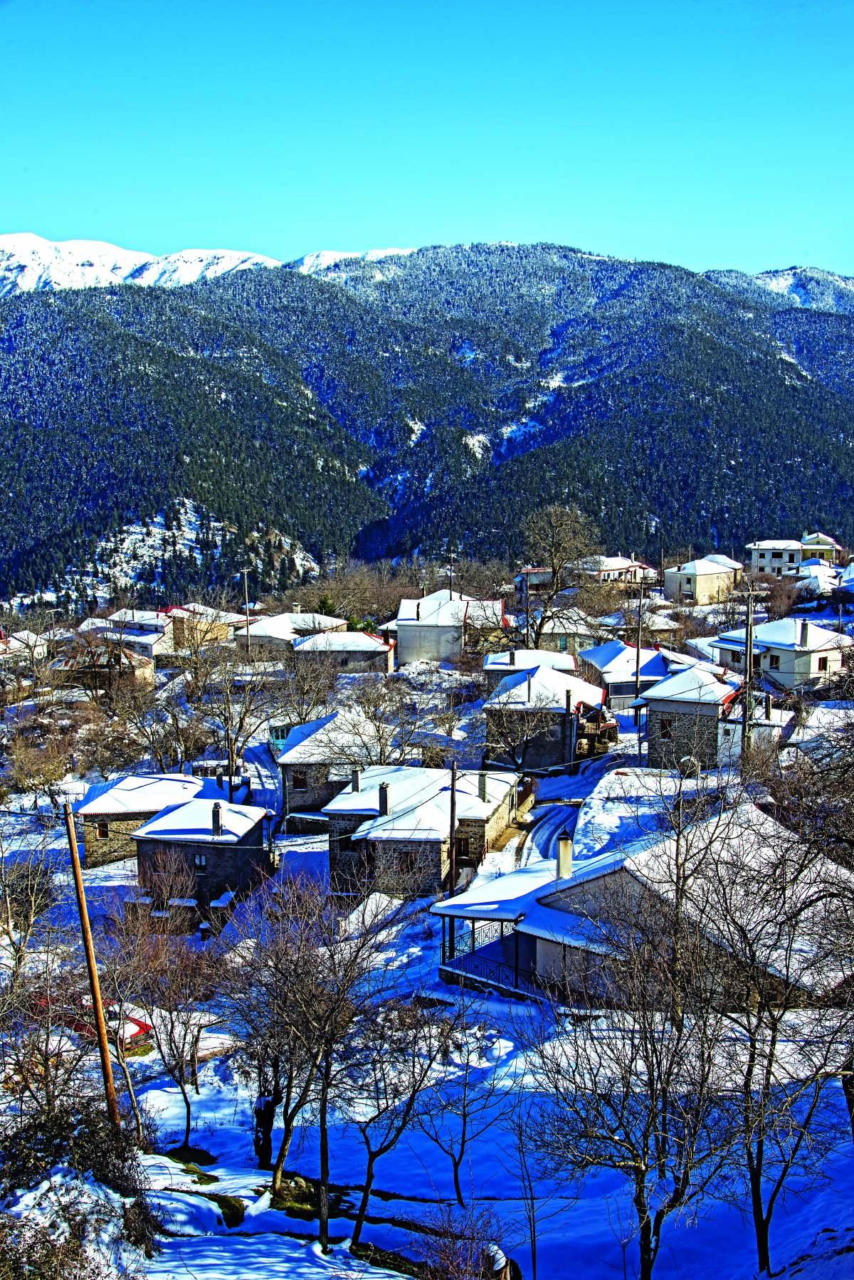Κρίκελλο πανοραμική εικόνα του χιονισμένου χωριού