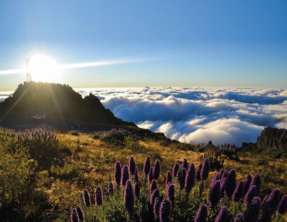 Υπέροχη φύση στη Μαδέρα