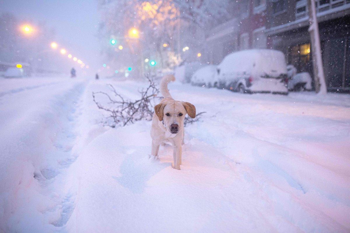 Χιόνια στη Μαδρίτη καλύφθηκαν τα πάντα