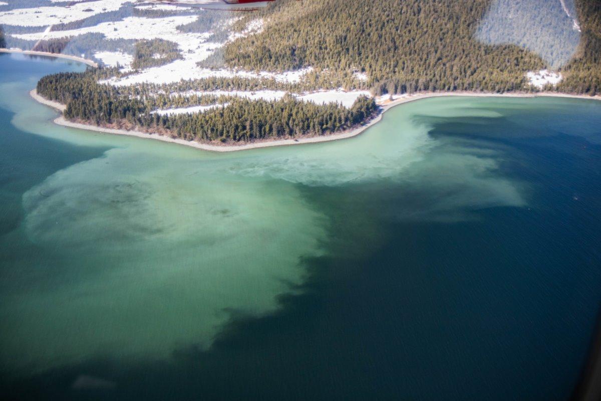 ακτογραμμή αλάσκας παγωμένη παραλία