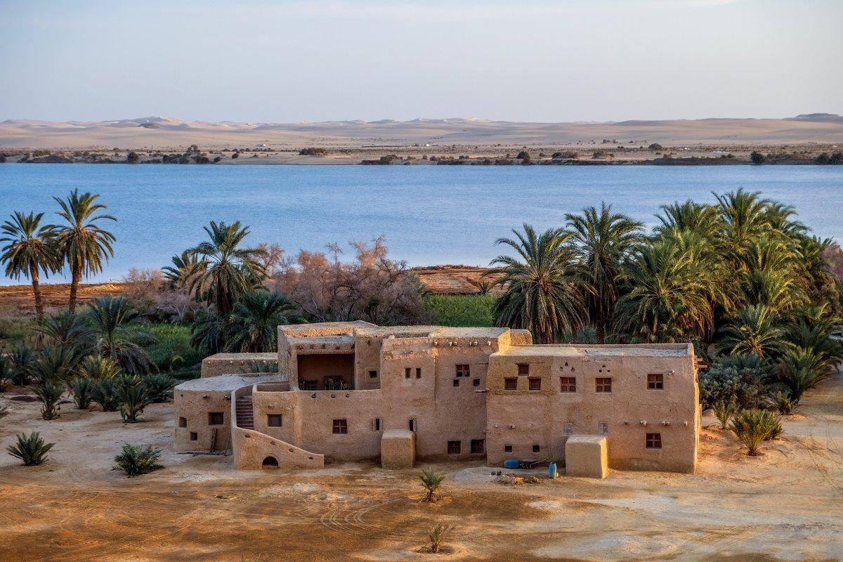 Όαση Σίβα, Αίγυπτος