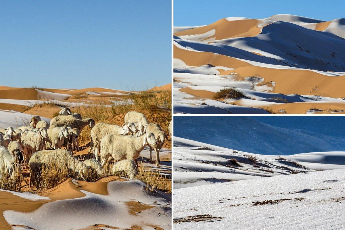 Ασυνήθιστο θέαμα με χιόνια στη Σαχάρα