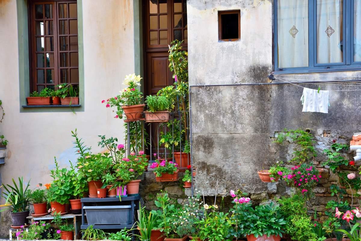 Dolceacqua μεσαιωνικό χωριό, δυτική Λιγουρία, Ιταλία, λουλούδια σε αυλή