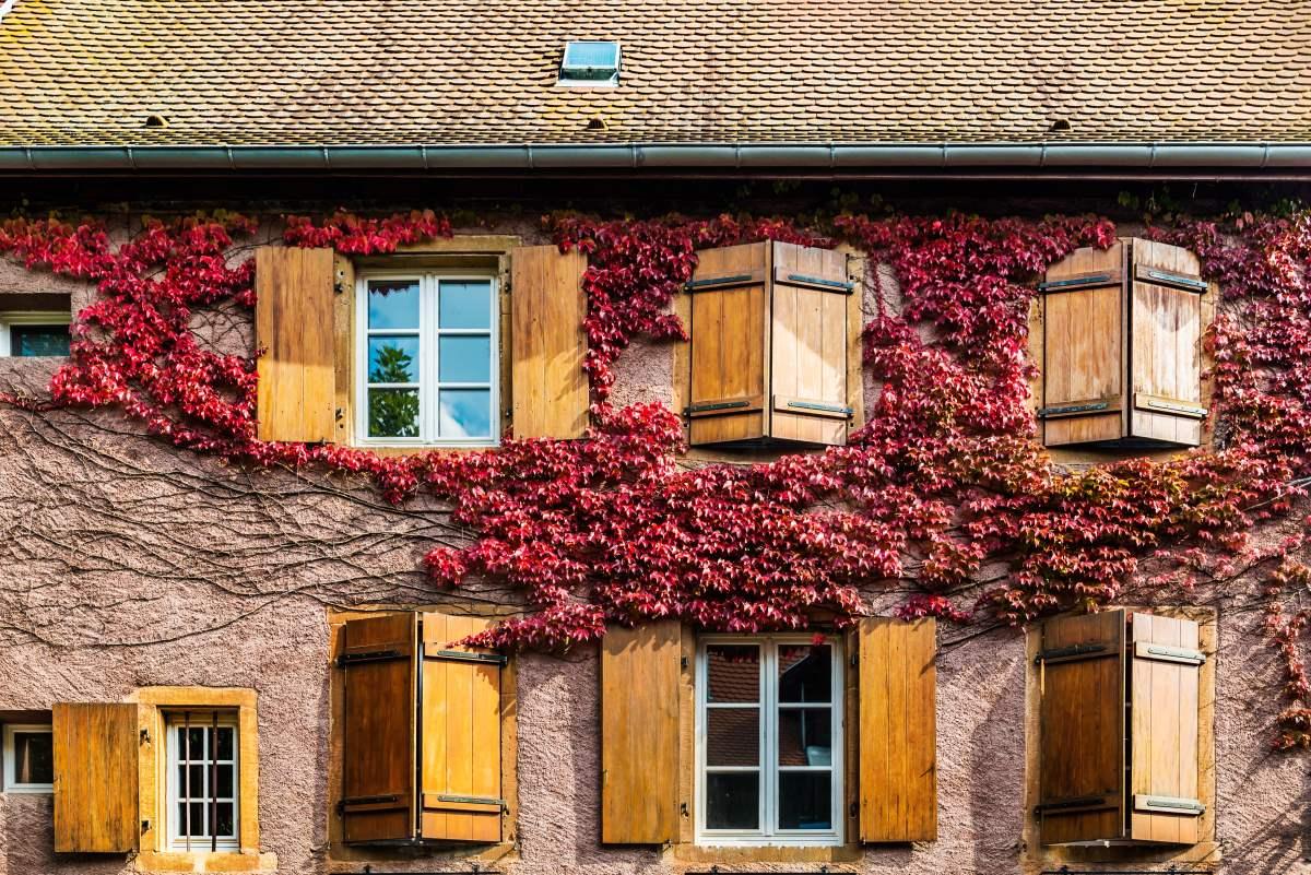 Γραφικές εικόνες στο Eguisheim, Γαλλία