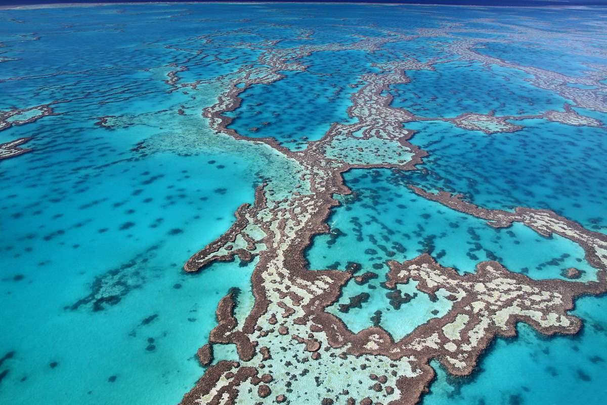 Μεγάλος Κοραλλιογενής Ύφαλος, Αυστραλία