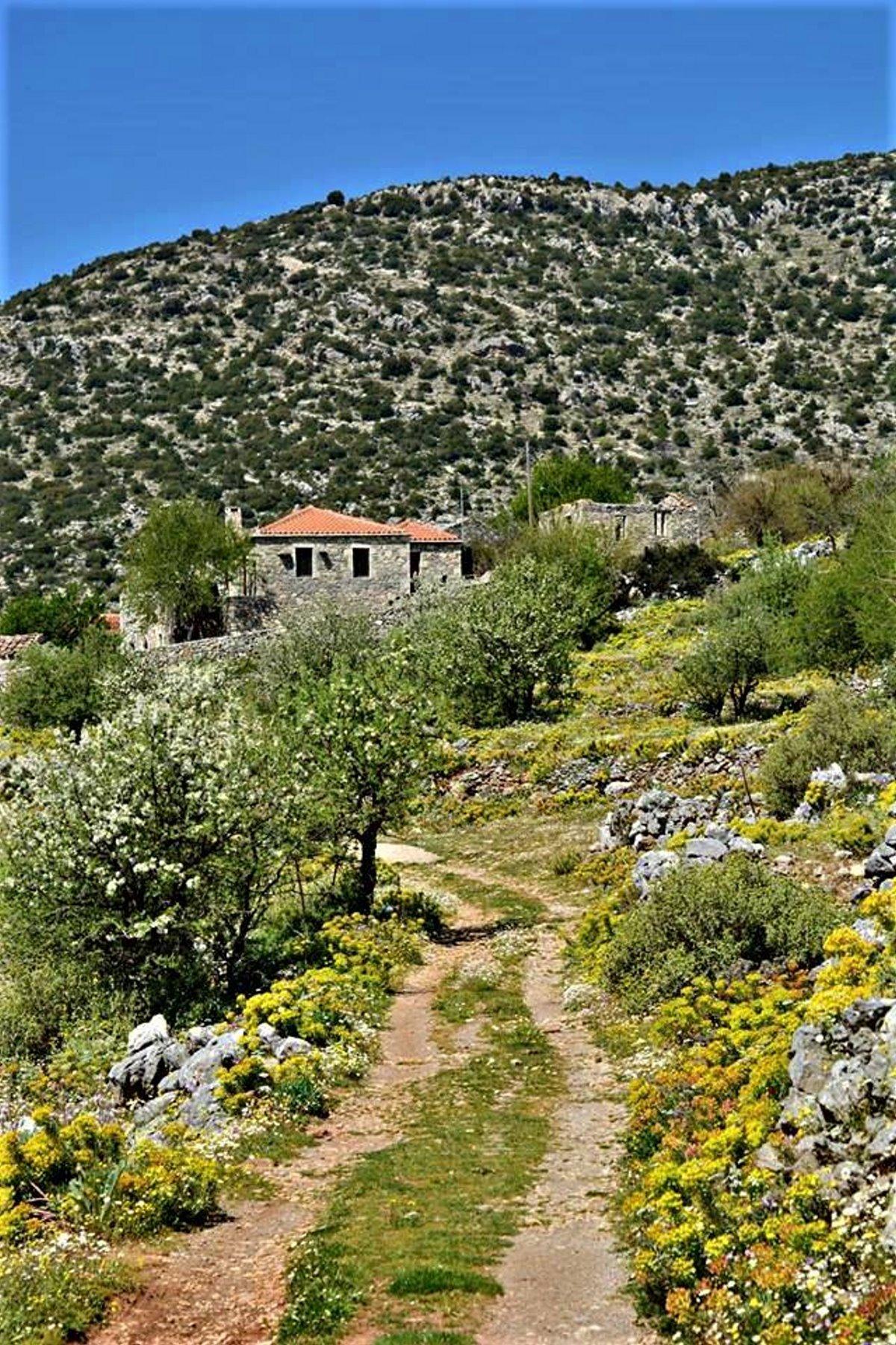 Σπίτια στα Αλτομιρά Μεσσηνίας