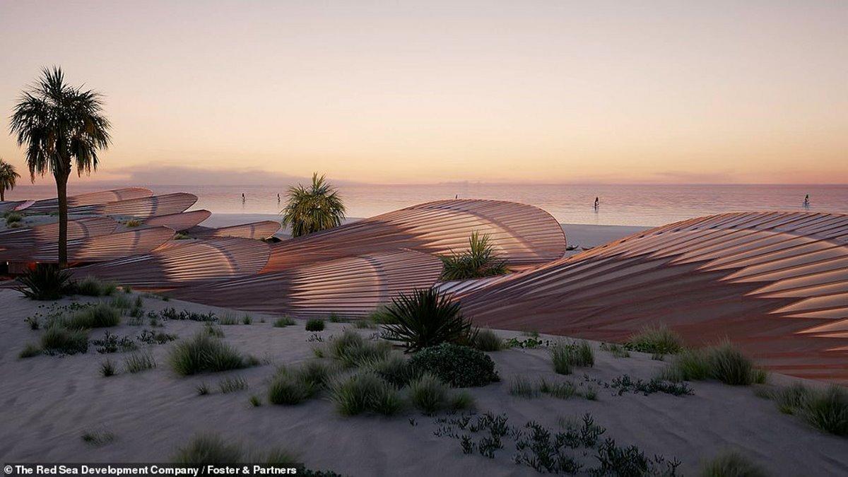 Coral Bloom Σαουδική Αραβία giga resort δίπλα στη θάλασσα