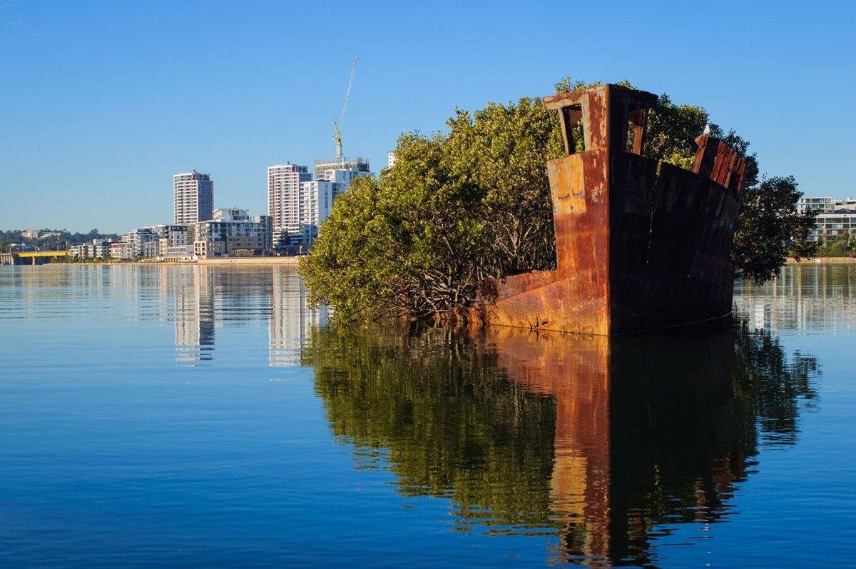 Πλωτό δάσος Αυστραλία