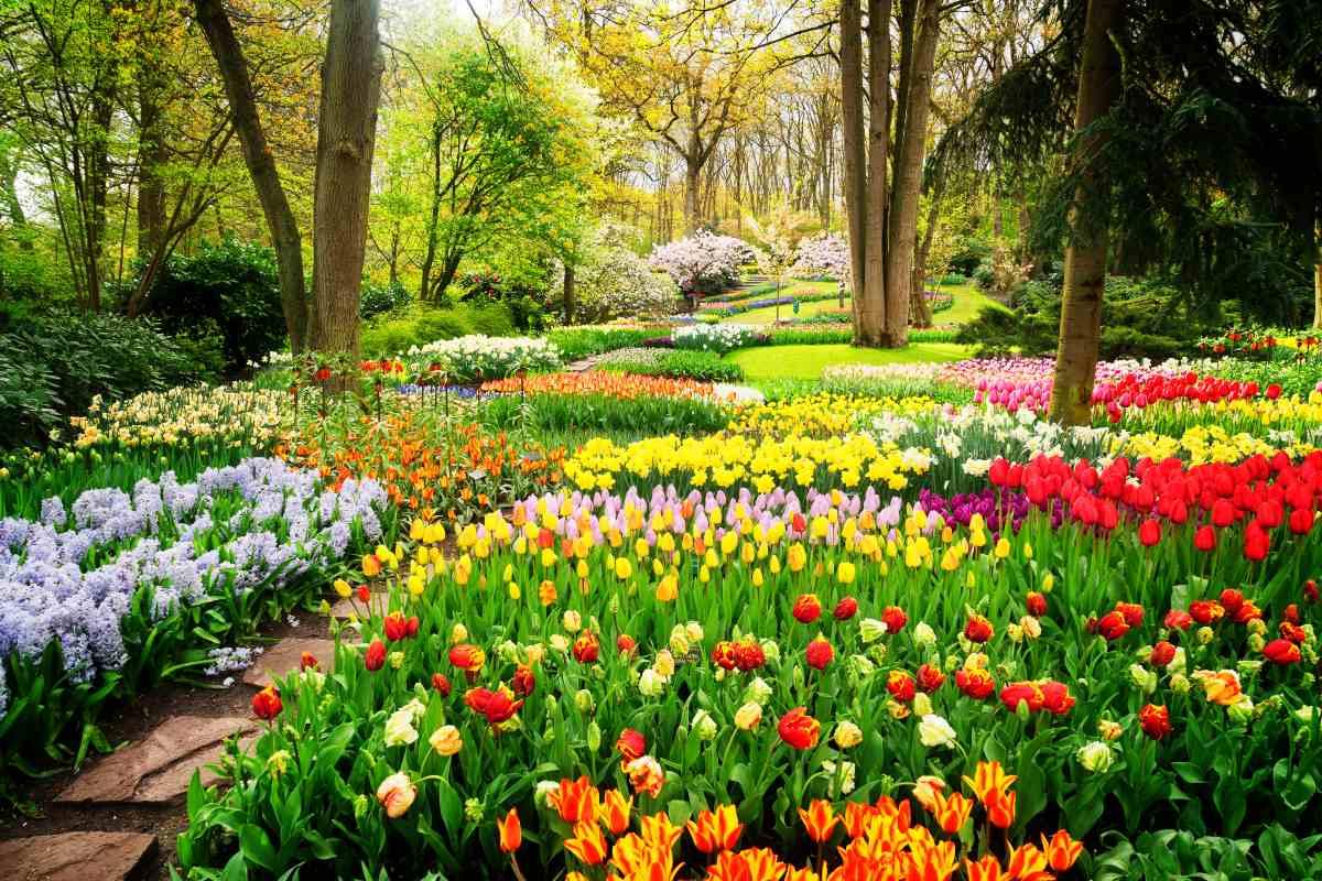 Κήπος της Ευρώπης, Άμστερνταμ
