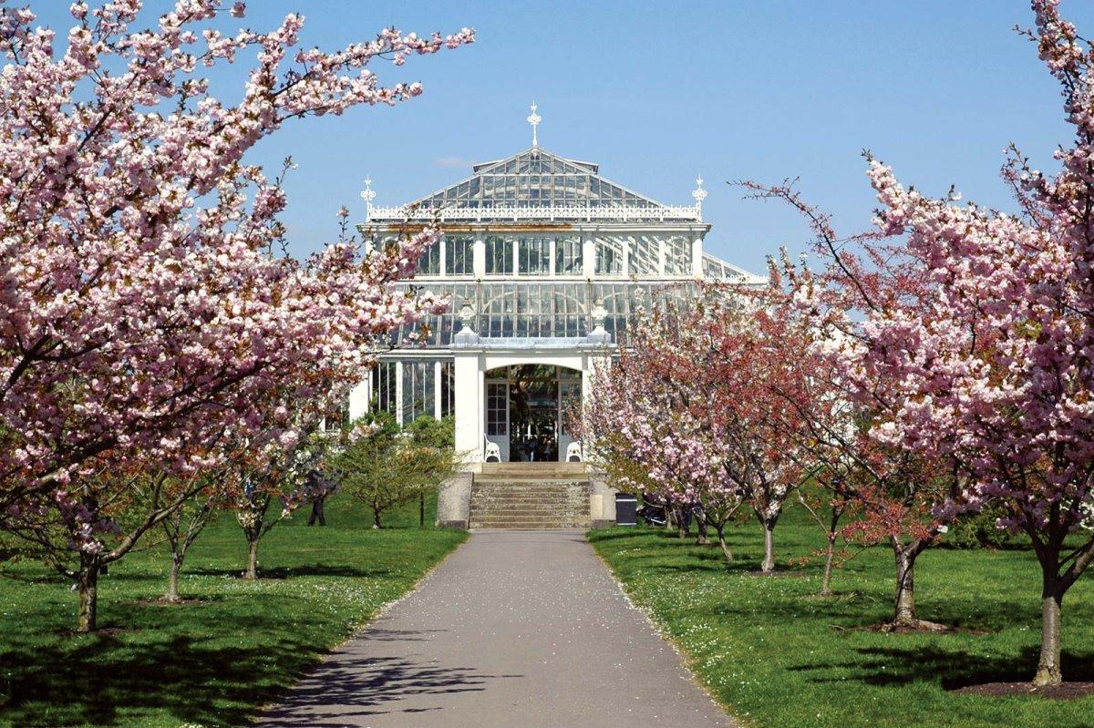 Κήποι Kew, Λονδίνο, Αγγλία
