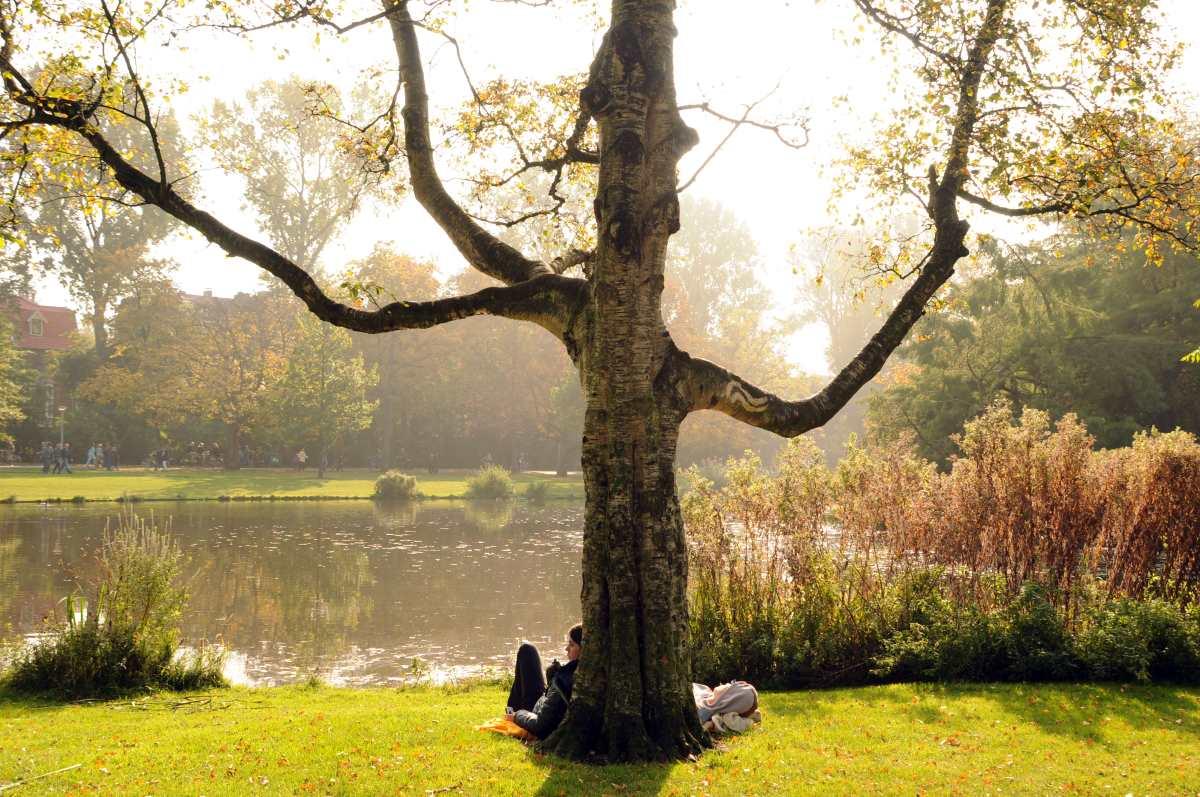 Voldenpark, Το διασημότερο πάρκο της Ολλανδίας