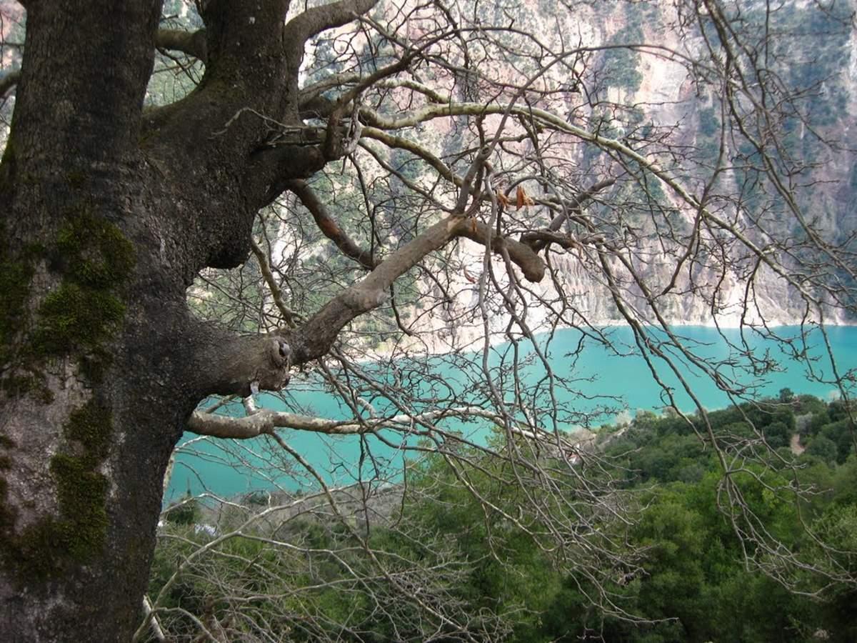 Αγαλιανός: Ένα χωριό βγαλμένο από σελίδες παραμυθιού - Το μοναδικό με την εκπληκτική θέα στη λίμνη Κρεμαστών! (βίντεο)