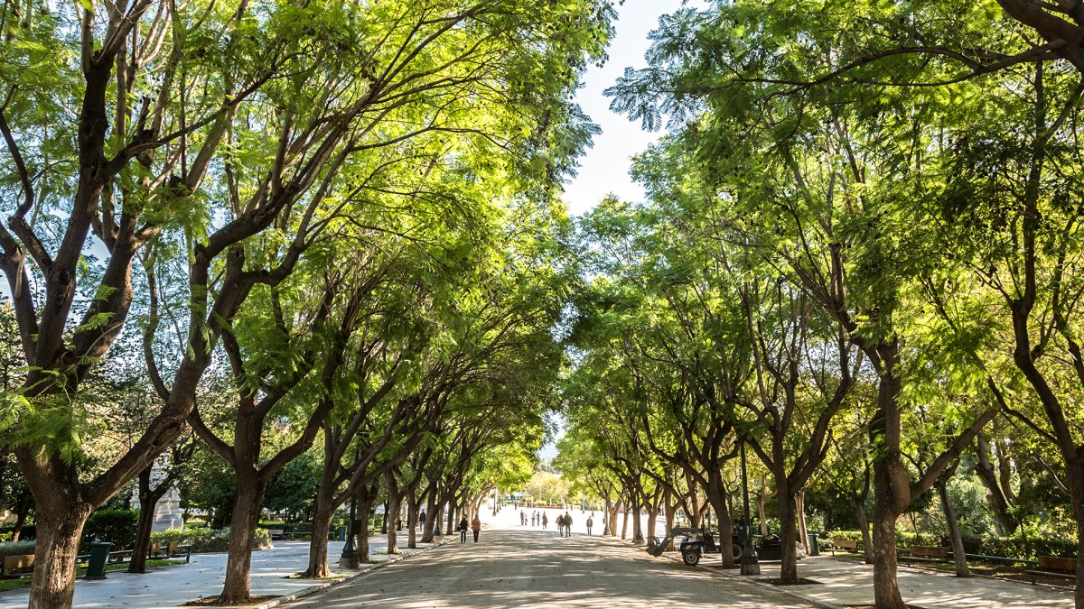 Εθνικός Κήπος Αθήνα