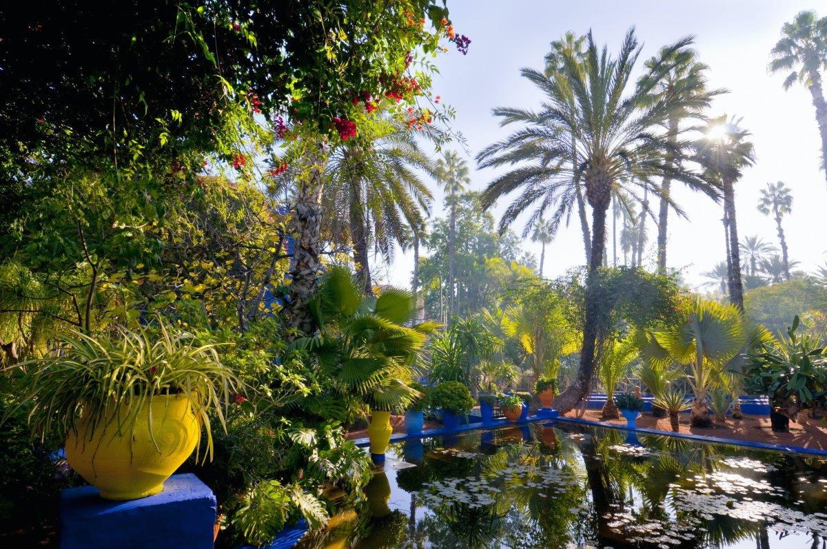 Κήπος Majorelle, Μαρακές, Μαρόκο