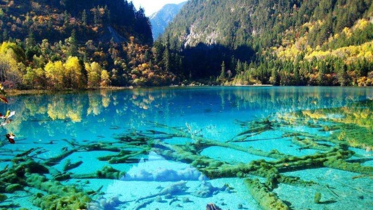 Λίμνη των 5 λουλουδιών, Εθνικό Πάρκο Jiuzhaigou Κίνα