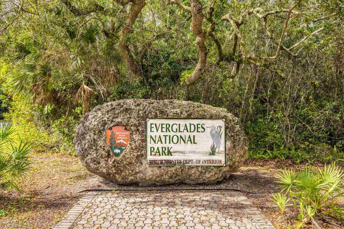 Εθνικό Πάρκο Everglades, ΗΠΑ
