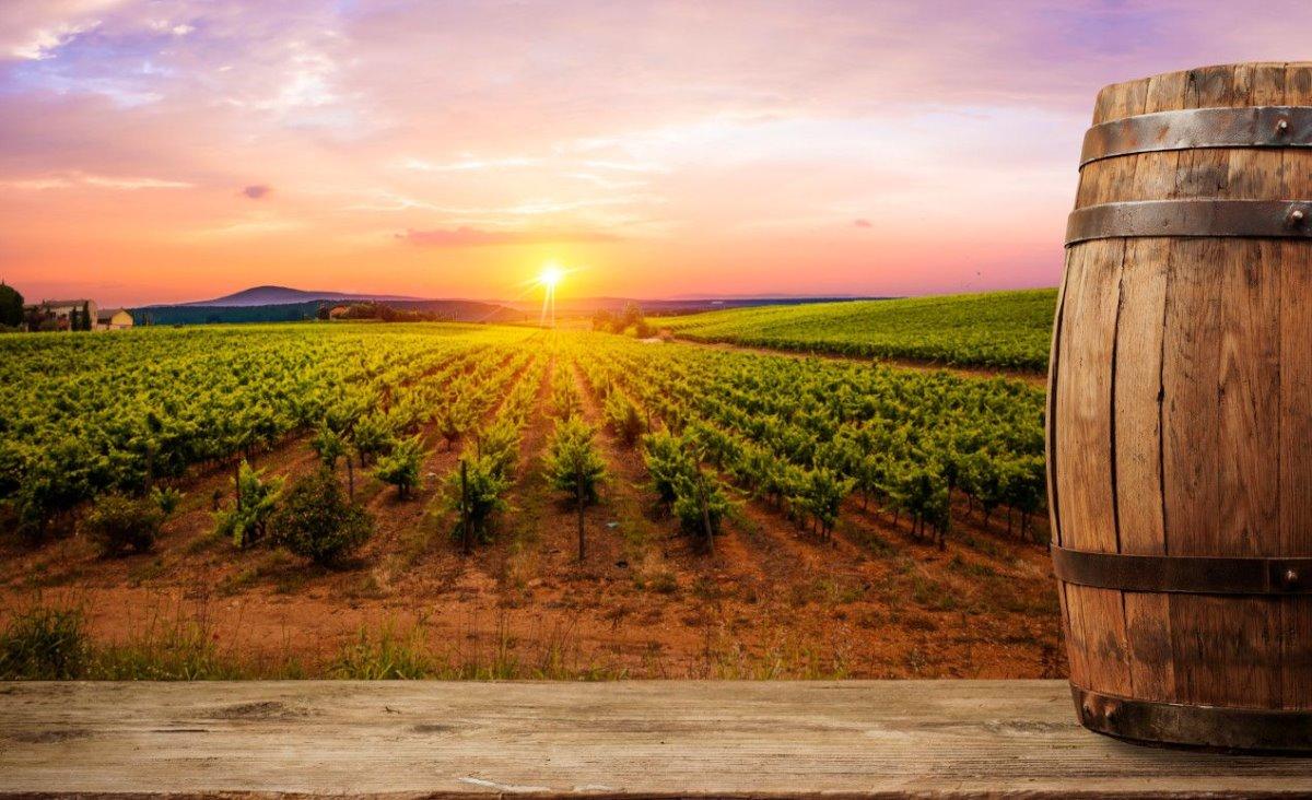 Ιταλία κρασιά
