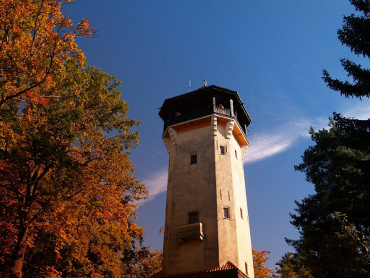 Diana Observation Tower & Deer Jump Lookout Κάρλοβι Βάρι