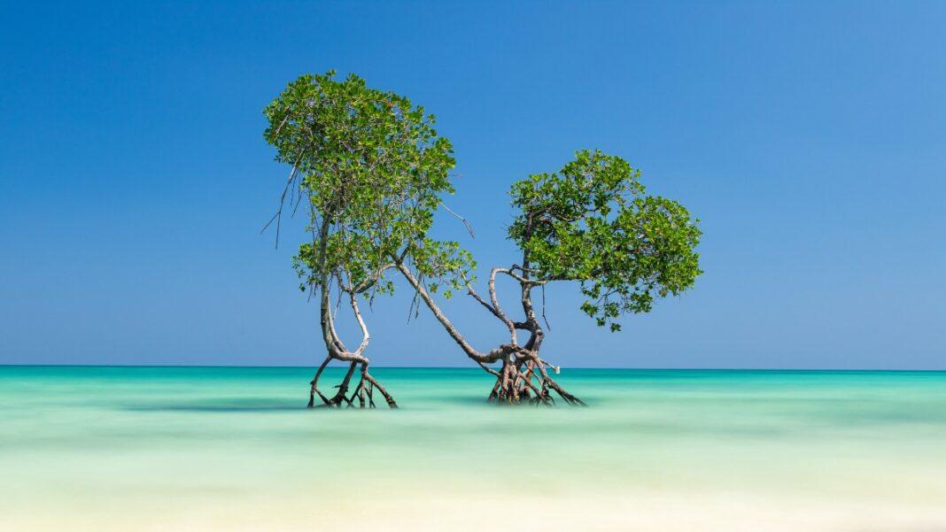 Οι ωραιότερες παραλίες του κόσμου