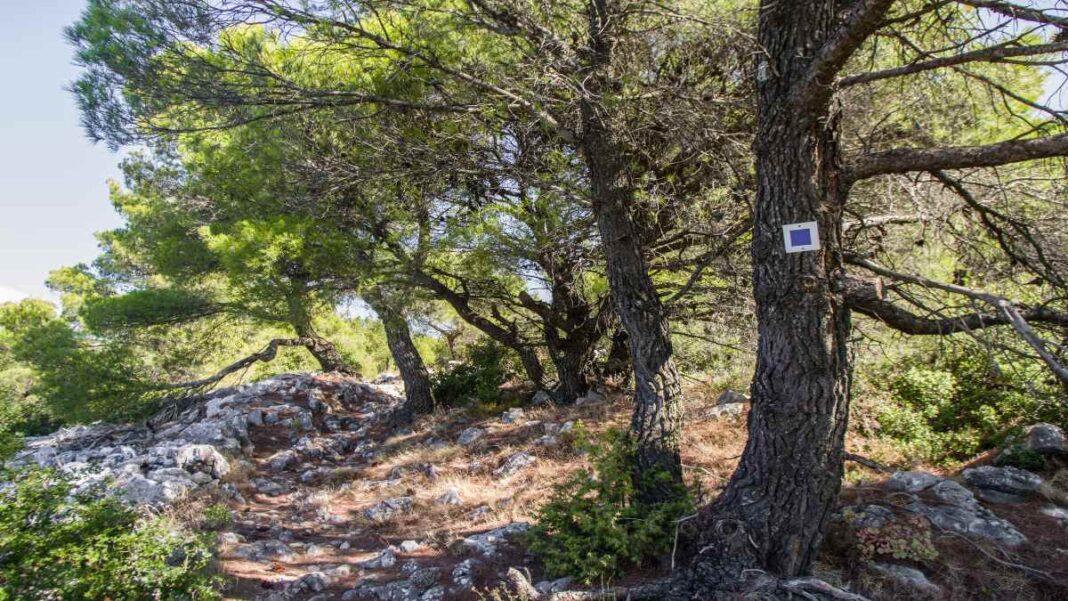 3 βουνά κοντά στην Αθήνα -Πάρνηθα