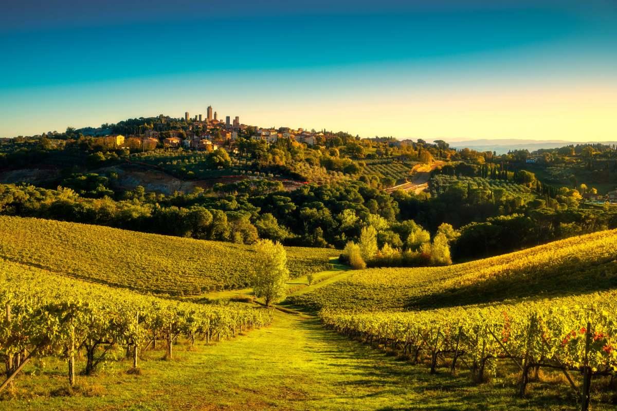 San Gimignano, Τοσκάνη - αμπελώνες