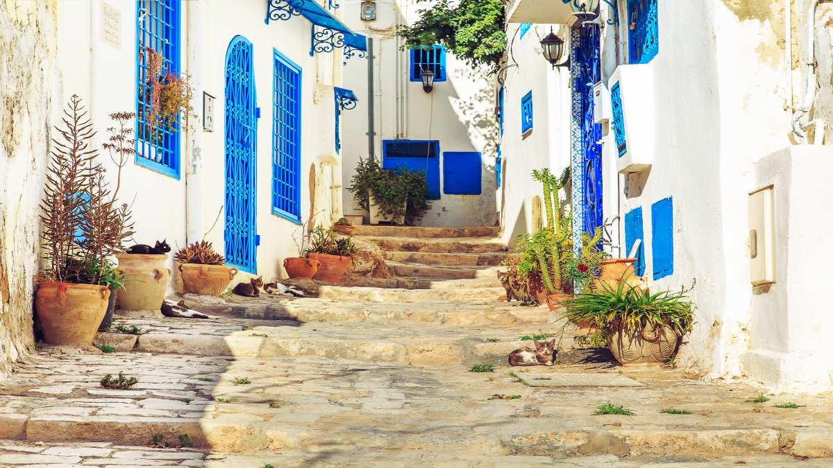 Σίντι Μπου Σαΐντ, στα σοκάκια του γραφιού χωριού της Τυνησίας