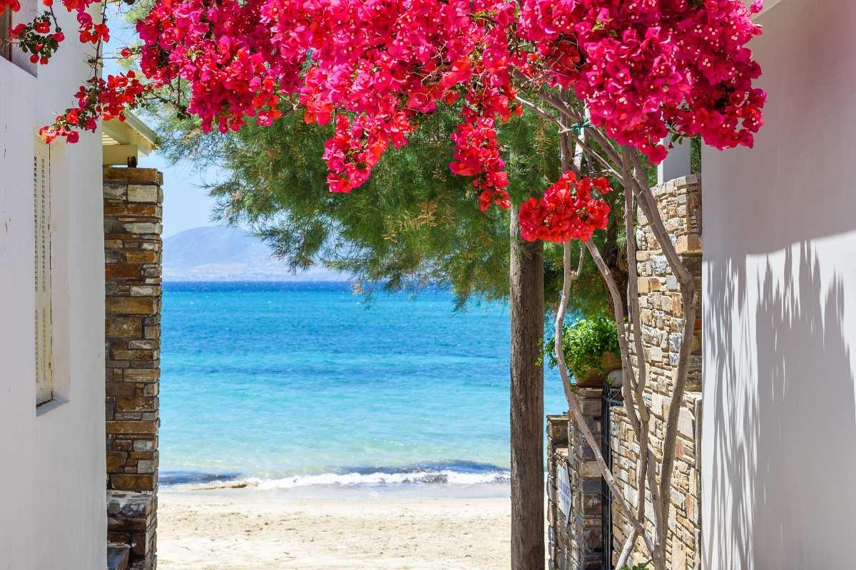 ομορφότερα ελληνικά νησιά - Νάξος