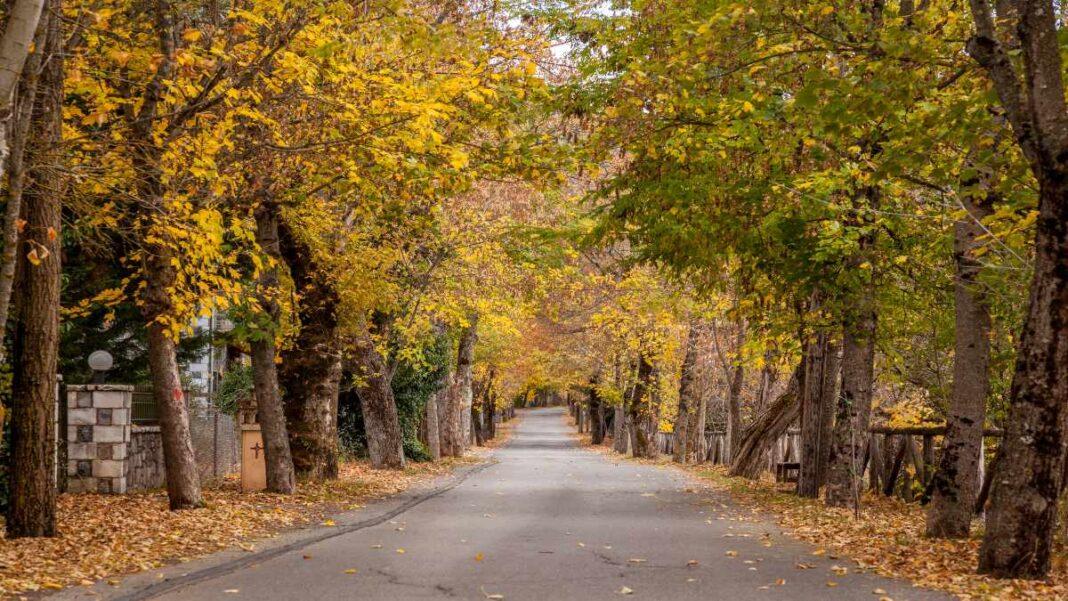 4 εκδρομές κοντά στην Αθήνα - Βυτίνα