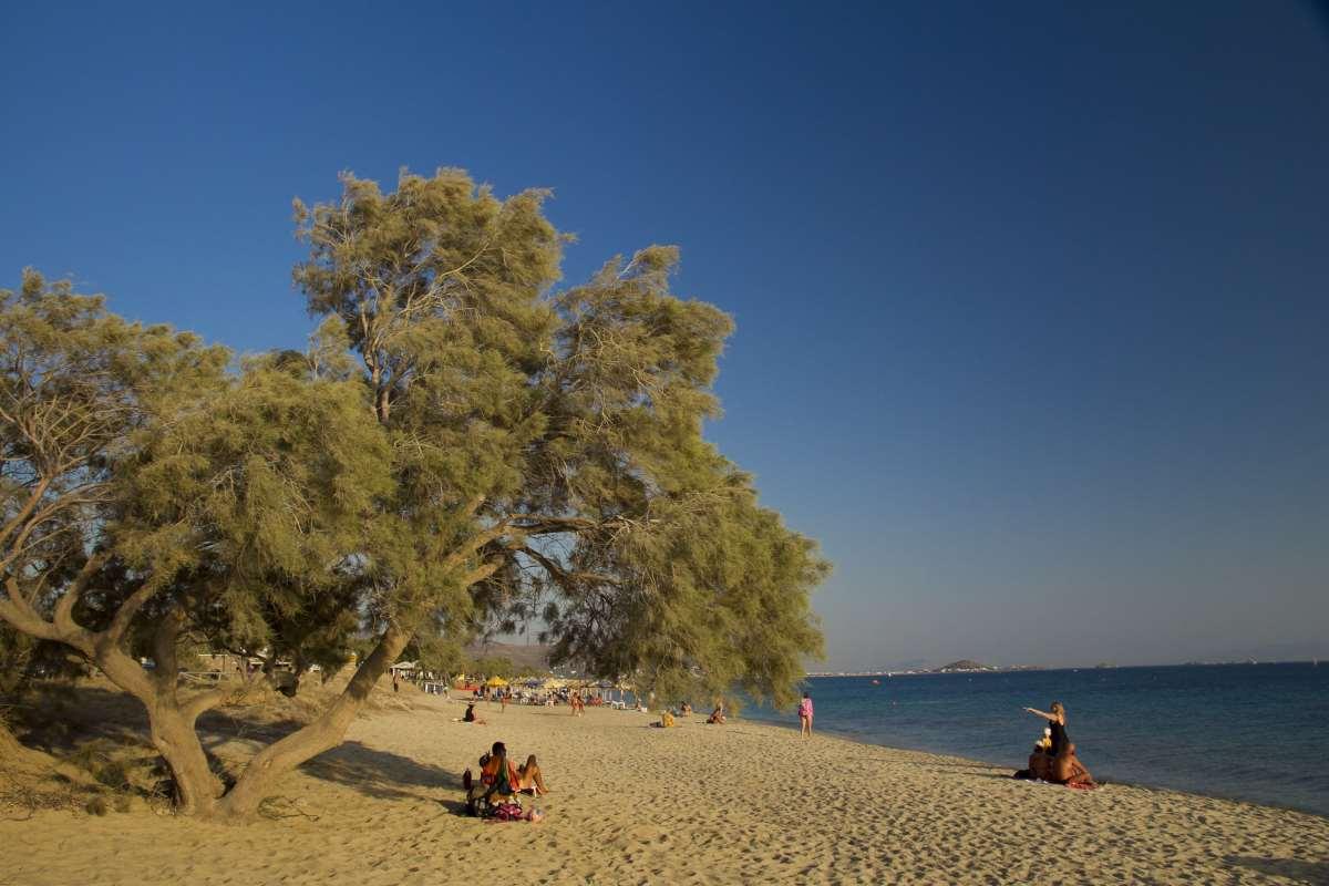 Πλάκα παραλία Νάξος