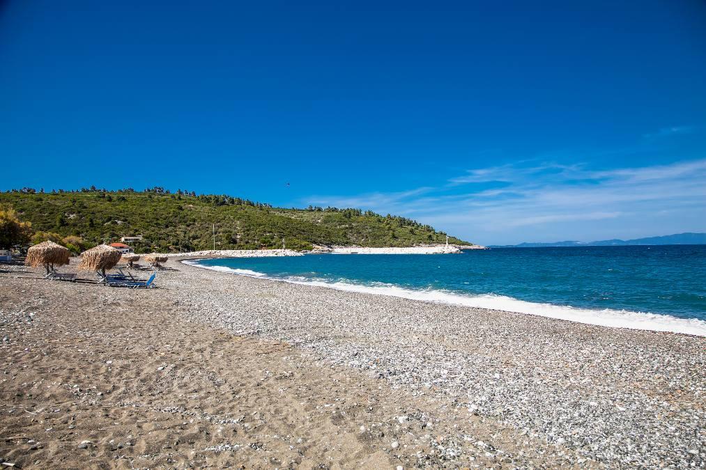 Παραλία Ψαροπούλι Εύβοια